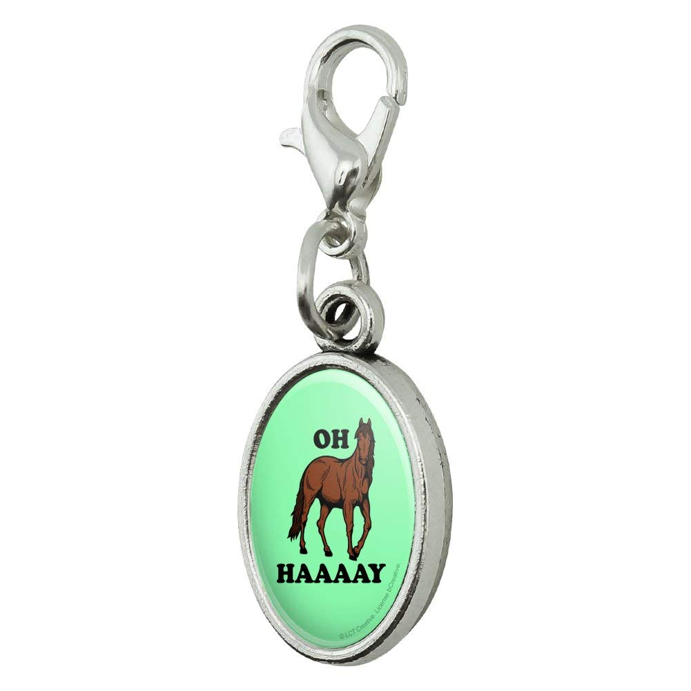 GRAPHICS /& MORE Oh Haaaay Horse Hay Hey Funny Humor Antiqued Bracelet Pendant Zipper Pull Oval Charm with Lobster Clasp