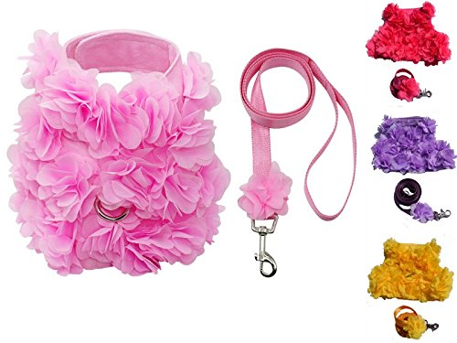 Lushpetz Floral Pink, Purple or Yellow Dog Harness and Leash Set for XSmall and Small Breeds Very Stylish and Cute (M, Turquoise) (D-ring Harness Cat)