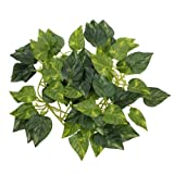Dcolor 6.56ft Artificial Ivy Leaf Garland Plants Vine Fake Foliage Flowers Home Decor,Rohdea