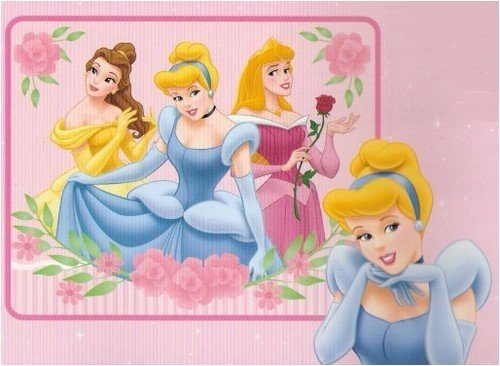 "Disney Princess Blanket Fleece Throw ""Beautiful Dreamers"""
