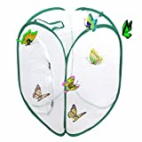 Trasfit Pop-up Insect and Butterfly Habitat Cage Terrarium - 24 Inches Tall