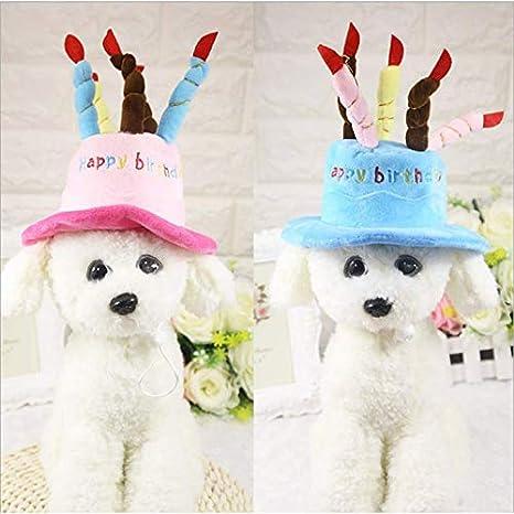 VVDF - Gorro de Fiesta de cumpleaños para Mascotas, Gato ...