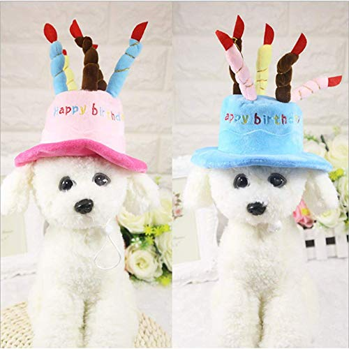PinHui Sombrero de Fiesta de cumpleaños para Mascotas ...