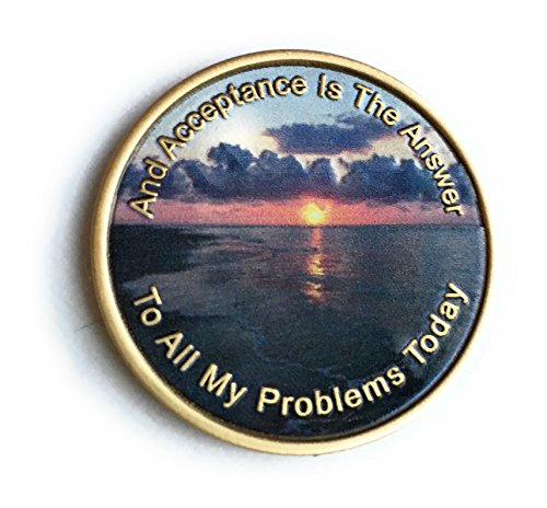 Coin Cloisonne - Acceptance Is The Answer Beach Sunrise Color Bronze AA Medallion Chip Page 449 417