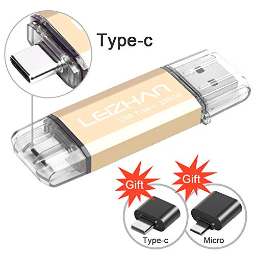 leizhan Type-C USB Flash Drive 256GB, USB C Photo Stick for HTC 10,Huawei P20,Samsung Galaxy S10, S9, Note 9, S8, S8 Plus, USB OTG Adapter Micro/Type-C USB to USB Converter for Tablet PC Android ()