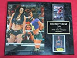 AJ LEE Paige WWE 2 Card Collector Plaque w/8x10