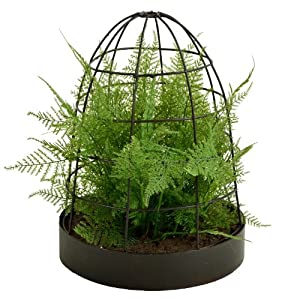 Picnic at Ascot Artificial Asparagus Fern 106