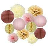 12pcs Cream Ivory Pink Tan Beige Party Decoration Tissue Pompoms Flower Hanging Paper Lantern Honeycomb Balls Vintage Wedding Neutral Baby Shower Themed Party Centerpieces