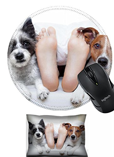Price comparison product image Liili Mouse Wrist Rest and Round Mousepad Set, 2pc Wrist support rest IMAGE ID: 28038460 couple of dogs under white bed sheets with sleeping owner