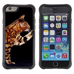 LASTONE PHONE CASE / Suave Silicona Caso Carcasa de Caucho Funda para Apple Iphone 6 PLUS 5.5 / Ocicat Serengeti Bengal Savannah Cat