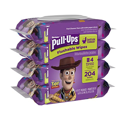pull-ups-big-kid-flushable-wipes-pouch-204-count
