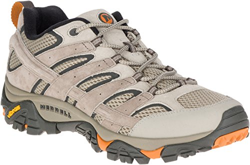 Merrell Men's Moab 2 Vent Hiking Shoe (11 D(M) US, Brindle)