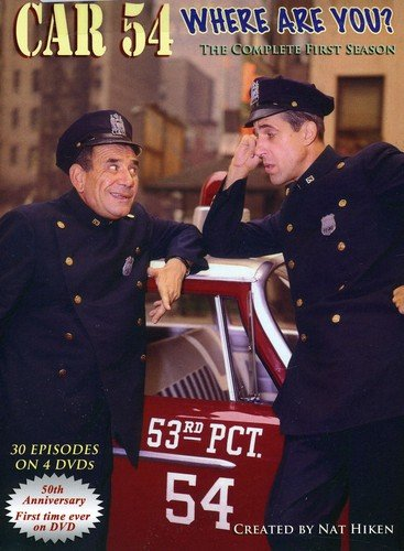 car 54 where are you season 1 - 2