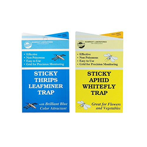 sticky-thrips-leafminer-traps-15-pcs-and-yellow-sticky-aphid-whitefly-traps-15pcs