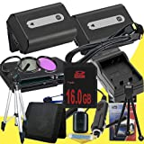 TWO NPFH50 Lithium Ion Replacement Batteries w/Charger + 16GB SDHC Memory Card + Mini HDMI + 3 Piece Filter Kit + Tripod + USB SD Memory Card Reader /Wallet + Deluxe Starter Kit for Sony DCRDVD508, DCRDVD408, DCRDVD308, DCRDVD108, DCRDVD505, DCRDVD405, DC