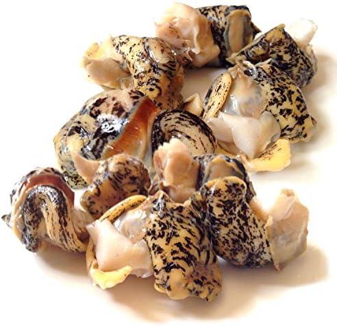 黒帯 つぶ貝 北海道 ボイル むき身 つぶ ツブ貝 北海つぶ アヒージョ おでん 各種煮物 (北海道 ボイル むき身 S 1kg)