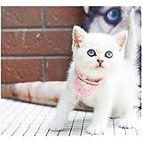 Stock Show Pet Cat Triangle Bibs Scarf with Botton Cute Fashion Neckerchief Collar Necktie for Kitten/Kitty/Puppy, L…
