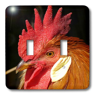 Rooster Leghorn (3dRose lsp_10910_2 Leghorn Rooster By Angelandspot Double Toggle Switch)