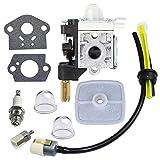 Best Fuel Maintenance For Echos - Carburetor with Spark Plug Gasket Fuel Maintenance Kit Review