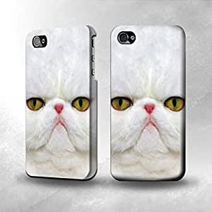 Apple iPhone 4/4S Case - The Best 3D Full Wrap iPhone Case - Persian Kitty Cat