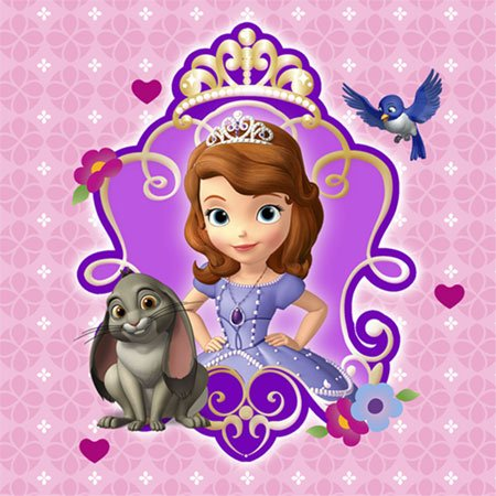 Hallmark 230444 Disney Junior Sofia the First Beverage Napkins for $<!--$4.19-->