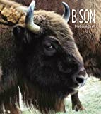 Bison, Melissa Gish, 089812669X