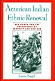 img - for American Indian Ethnic Renewal: Red Power and the Resurgence of Identity and Culture by Joane Nagel (1996-05-02) book / textbook / text book
