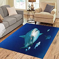 Area Rug Approx Size : 5' x 7' (Width : 60 inch Length : 84 inch) .Convenience:This Carpet feel warm,nature, simply style, it's easy to match your bedroom , living room, balcony. Comfort:Carpet is breathable,comfortable and healthy for your f...