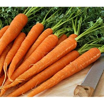 Grandiosy TENDERSWEET Carrot Seed JUICING RAW Canning CORELESS 200 Count PKT. : Garden & Outdoor