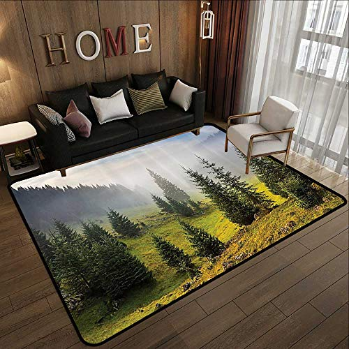 Rubber mat,Farm House Decor,Fir Trees on Meadow Between Hillsides with Conifer Forest in Fog Before Sunrise,White Green 59