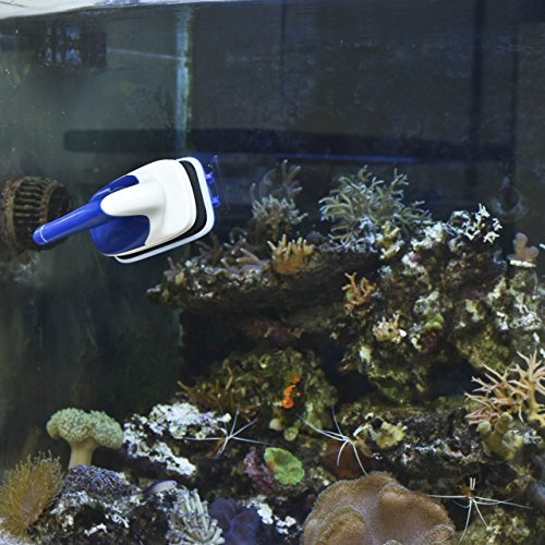 Aquarium cleaner newcomdigi handle design magnet aquarium for Best way to clean a fish tank