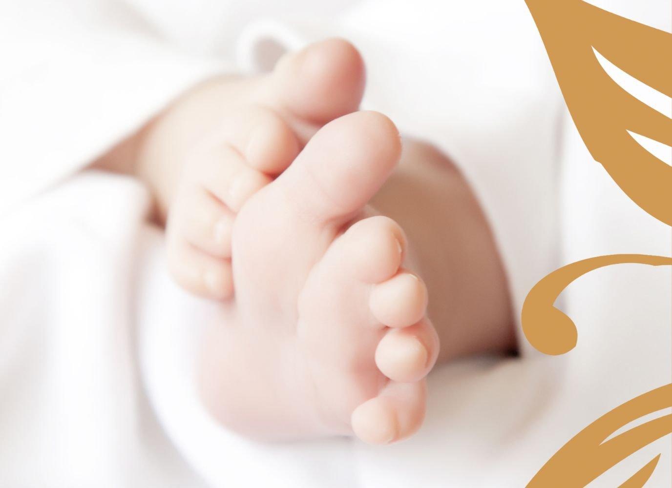 Kartenparadies Geburtskarte Babykarte Blaume, hochwertige hochwertige hochwertige Babykarte zur Geburt inklusive Umschläge   20 Karten - (Format  148x105 mm) Farbe  DunkelGrün B01N4TXZ6D   Exquisite (in) Verarbeitung    Sehen Sie die Welt aus der Perspektive des Kinde 2c40fd