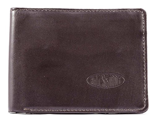 Big Skinny Men's L-Fold Passcase Leather Slim Wallet, Holds Up to 30 Cards, Brown