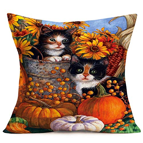 Aremazing Throw Pillow Covers Lovely Animals Adorable Black Cat with Pumpkin Corn Sunflower Cotton Linen Home Decor Pillowcase Farmhouse Autumn Fall Outdoor Decor Throw Pillow Cushion Cover 18''x18''