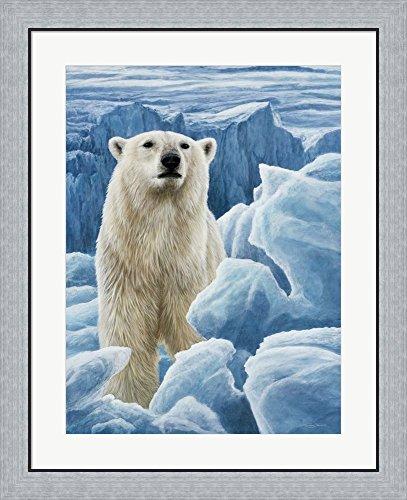 Ice Bear Polar Bear by Dr. Jeremy Paul Framed Art Print Wall Picture, Flat Silver Frame, 26 x 32 - Frame Jeremy