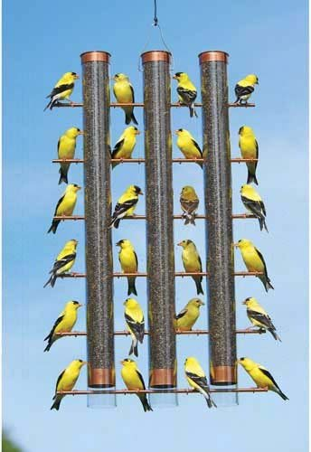 CHSGJY Finches Favorite 3 Tube Finch Thistle Seed Bird Feeder Cooper (Thistle Feeder Tube Finch Metal)