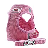 Glumes Dog Vest Harness Walking Adjustable Safety Vest for Puppy for Small Dogs or Fat Cats Dogs Pet Outdoor (with Rope)