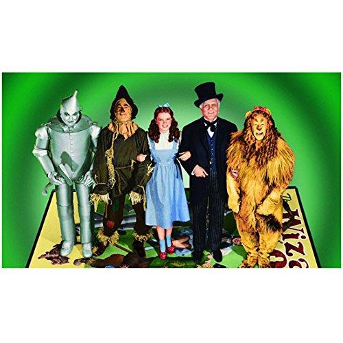The Wizard of Oz 8 x 10 Cast Photo Tin Man, Scarecrow, Dorothy, Wizard & Lion Green Background kn