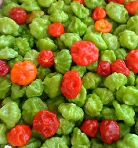 AJI Dulce Pepper (Fresh Pods) No intense heat ,important ingredient for sofrito.(1 Lb) from caribbean Garden