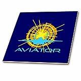 3dRose Alexis Design - Transport - Aviator. Sun, aircraft silhouette, text aviator. Dark blue background - 8 Inch Glass Tile (ct_267209_7)