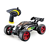 HOSIM All Terrain Remote Control Car - Splash Resistant, Fast 4 X 4 Off Road Electric RC Truggy, Hobby Grade 1/24 Scale - Best Gift for Boys & Girls and Even Adults