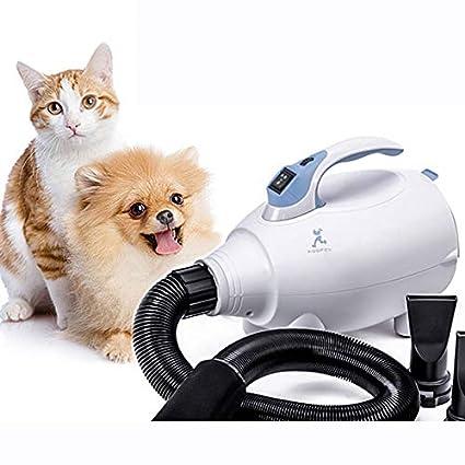 Peluquería de Mascotas Secador de Pelo Gato de Alta Velocidad Secadores de Pelo Secador de bajo