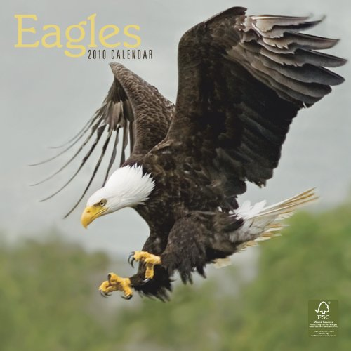 Eagles 2010 Square Wall (Multilingual Edition)
