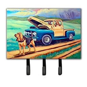 Caroline's Treasures 7513TH68 Bloodhound Leash Holder or Key Hook, Triple, Multicolor 17