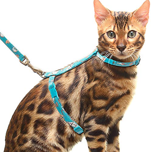 CHERPET Cat Harness and Leash with Breakaway Collar - Escape Proof Adjustable for Outdoor Walking, Safety Buckle Durable Blue Nylon Cute Personalized Printed Harnesses for Puppy Kittens Small Animals
