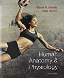 Human Anatomy and Physiology Plus MasteringA&P with EText -- Access Card Package and Human Anatomy and Physiology Laboratory Manual, Cat Version, Update, Marieb, Elaine N. and Hoehn, Katja, 0321956656