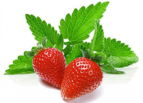 100+ ORGANICALLY Grown Strawberry Mint Seeds Heirloom Non-GMO Fragrant Rare! Fragrant, US Grown!