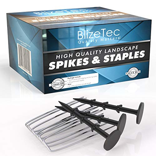 BlizeTec 100 Pack 6 Inche Heavy Duty Plastic Landscape Anchoring Spikes Nail and Galvanized Staples Pins; Gardening, Yard Fabric, Paver Edging, Weed Barrier and Turf Work Friendly