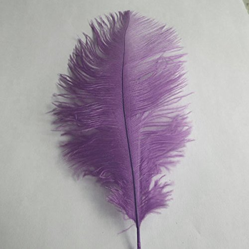 Firefly Imports Decorative Ostrich Feather, Lavender, 15-Inch