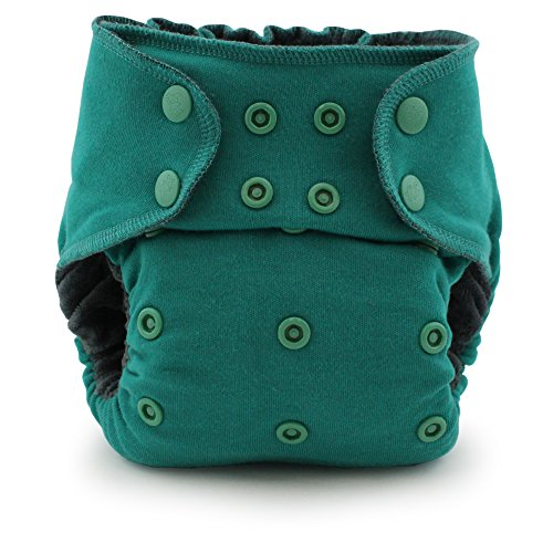 (Ecoposh OBV Pocket Fitted Cloth Diaper, Atlantis)